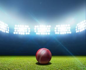 Cricket Stadium And Ball