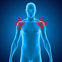 Shoulder joints