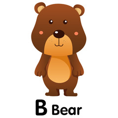 Illustrator of animal alphabet letter B for bear