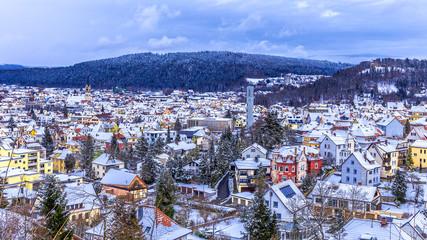Tuttlingen Winter Panorama