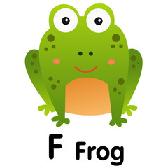 Illustrator of animal alphabet letter F for frog