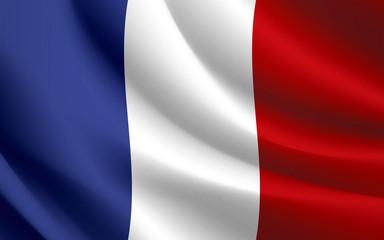 France Flag waving vector