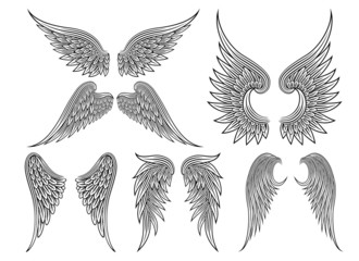 Vector heraldic wings or angel Wall mural