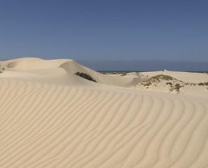 Zelfklevend Fotobehang Zandwoestijn Dunes at Eucla, Nullarbor, Western Australia