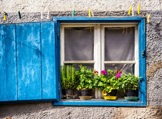 old window and flowers
