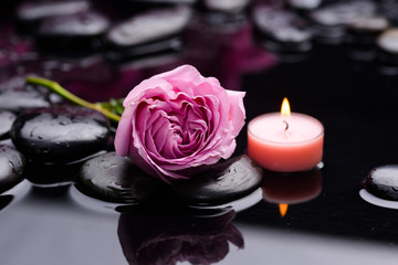 Beautiful lying down rose with candle and therapy stones