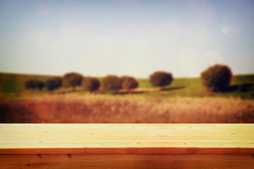 wood board table in front of summer landscape of field with tree
