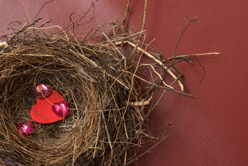 Nest of Love