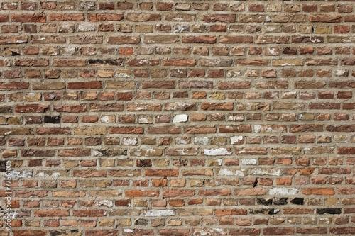 backsteinmauer als hintergrundbild garten kosten