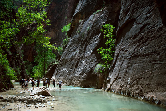 Canyoneering in the Narrows, Zion Canyon