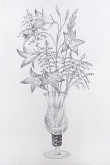 Pencil Drawing Glass Vase Flowers