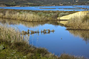 Sardegna, meraviglioso stagno