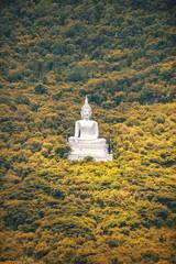 Thailand big buddha over the mountain
