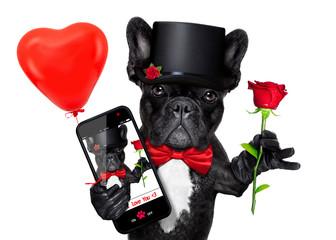 valentines selfie dog