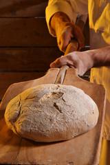 Sacando el pan del horno.Horneando pan.