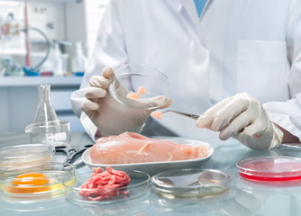 Food quality control expert inspecting at food specimen