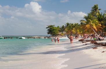 On tropical beach. Isla Saona, La Romana, Dominican republic