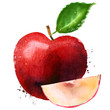 Red Apple vector logo design template. fruit or food icon.