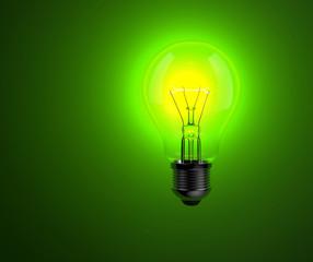 Light bulb on green background.