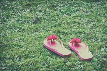 two playful pink flip-flops on green grass