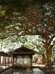 pavillion in Mandalay Myanmar