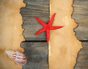 Decor of seashells, starfish and old paper