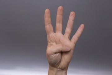 quattro dita