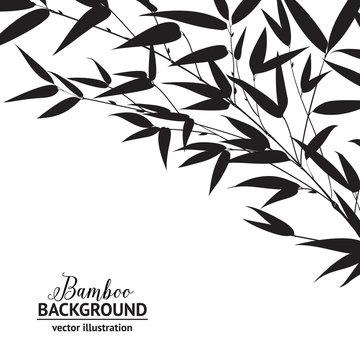 Bamboo ink drawing.
