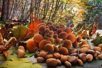funghi e frutta secca atmosfera autunnale