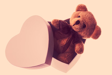 bear in heart box