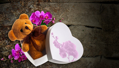bear with orchid in heart box