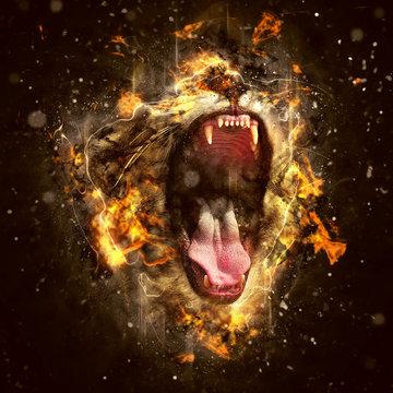 Conceptual Lion Portrait