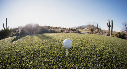 Tee off golf ball - wide angle view Fisheye lens effect.