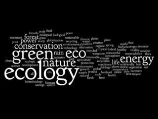 Conceptual ecology word cloud