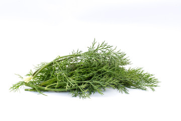 Pile of fresh dill isolated on a white background