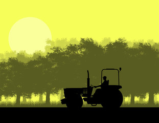 Silhouette of tractor in forest