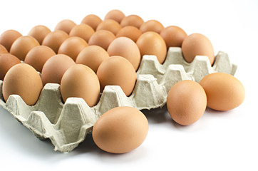 Chicken eggs in egg tray