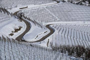 Vigneti delle Langhe in inverno sotto la neve