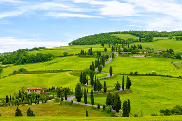 Photo sur Plexiglas Pistache Beautiful landscape of Tuscany with twisting road