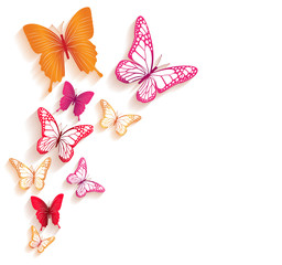 Realistic Colorful Butterflies Isolated for Spring