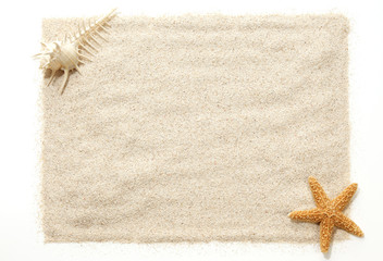 Starfish & Shells on Beach Sand