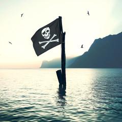 pirate's flag wind in the sea