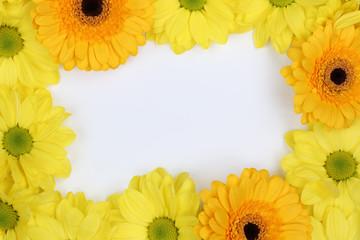 Rahmen aus Chrysanthemen Blumen zum Frühling oder Muttertag mit