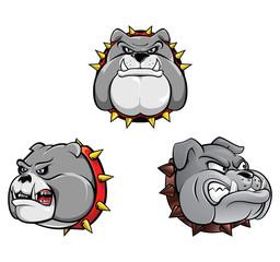 Bull Dog Head Collection
