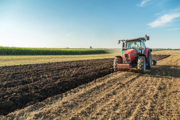 Wall Mural - Farmer plowing stubble field with red tractor