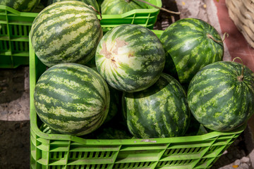 watermelon group from a marketplace in a plastic box
