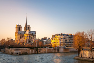 Wall Mural - Notre Dame Paris