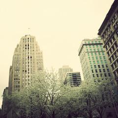 New York city Spring