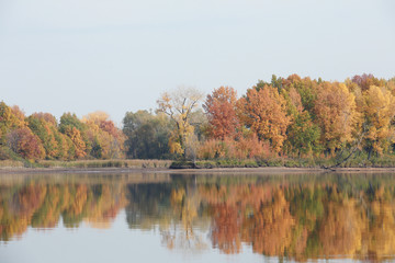 autumn trees reflected in the river