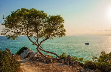 Evening landscape over  Mediterranean Sea  of La Pineda in Spain Wall mural